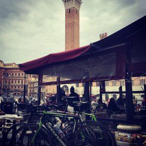 Tour in bici da Rapolano Terme a Siena